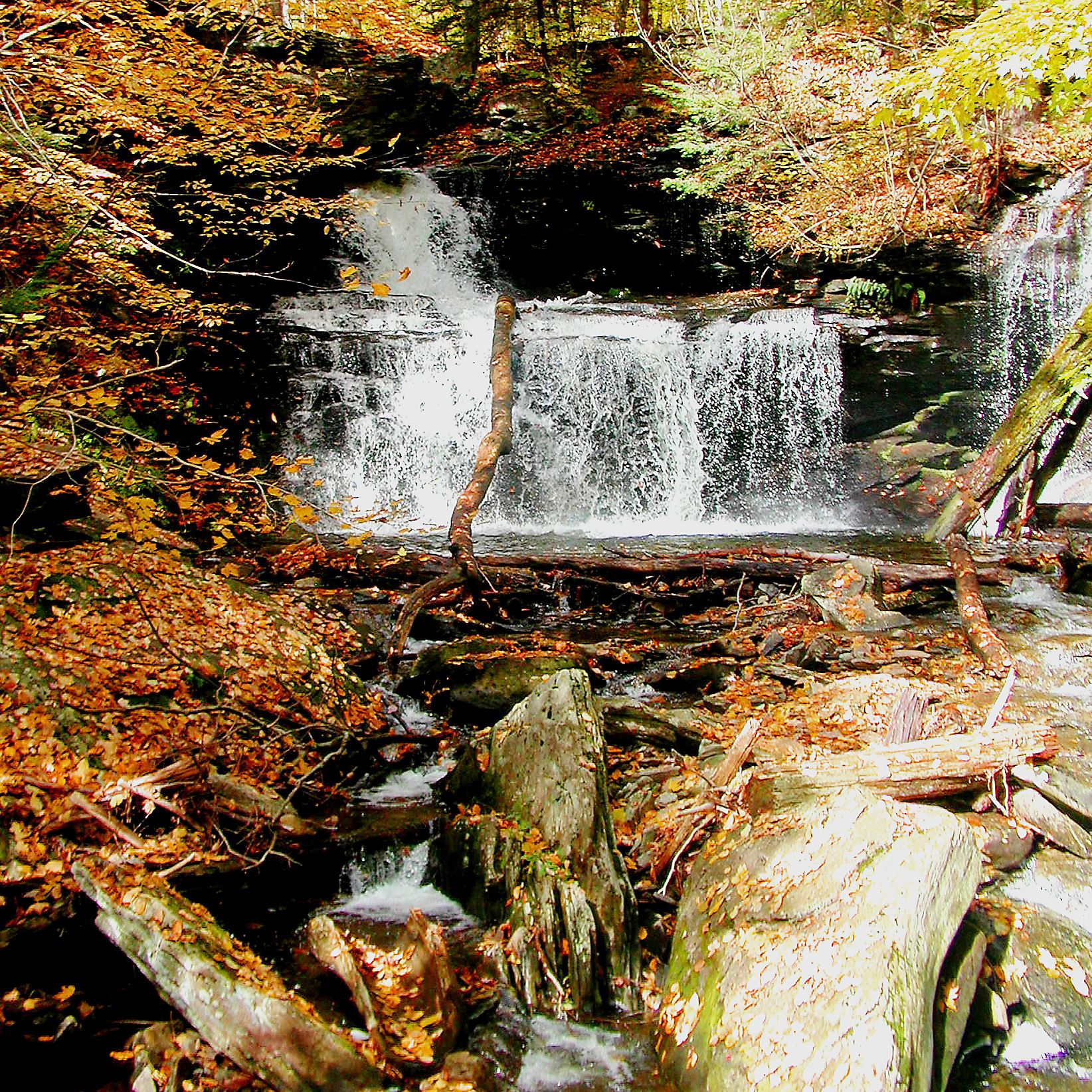 Autumn shows its colors at Ricketts Glen State Park